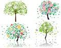Blossom tree Royalty Free Stock Photo