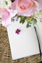 Blossom on white page put blank Royalty Free Stock Images