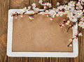 Blossoming branches on a wooden background Stock Images