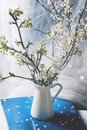 Blossoming cherry branches interior with in white vase Stock Images