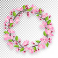 Blossoming cherry round frame for text. Apple-tree or cherry flowers and buds of branch are twisted by ring banner