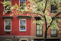 Blossoming tree apartment building manhattan new york city near an old Stock Photos
