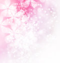 Blossoms and bokeh illustration pastel Stock Images