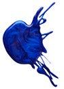Blots of blue nail polish Royalty Free Stock Photo