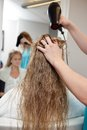 Blow drying wet hair beautician woman s at parlor Stock Image