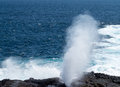 Blowhole at Suarez Point on Galapagos Royalty Free Stock Photos