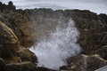 Blowhole underway in action at pancake rocks punakaiki west coast south island new zealand Royalty Free Stock Image