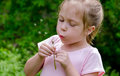 Blowing dandelion fluff a little girl in pink blows Stock Photography