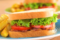 Blt bacon lettuce tomato sandwich fresh homemade and with french fries on blue plate selective focus focus on the front of the Royalty Free Stock Photos