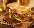 Blt bacon lettuce tomato sandwich on a napkin shot with selective focus close up Stock Photography