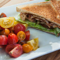 BLT with a Tomato Salad Royalty Free Stock Photo