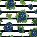 Blue anemone vector seamless pattern on stripped background