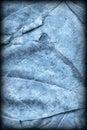 Blue Autumn Foliage Background Vignetted Grunge Texture Royalty Free Stock Photo