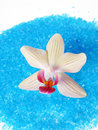 Blue bath sea salt with orchid Stock Photos