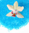 Blue bath sea salt with white orchid Royalty Free Stock Photo