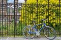 Blue bicycle stand on lock at grunge metal fence. european street. modern bicycle . Royalty Free Stock Photo