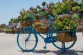 Blue big flower pot shaped bicycle with red flowers inside Royalty Free Stock Photo