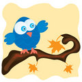 Blue bird on a branch Stock Image
