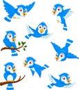 Blue bird cartoon posing collection Royalty Free Stock Photo