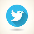 Blue bird icon isolated on white background. Vector social media Royalty Free Stock Photo