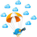 Blue bird searching on cloud Stock Photos