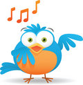 Blue Bird Singing Stock Images