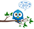 Blue bird sitting on twig, singing Stock Image