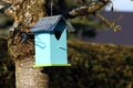 Blue birdhouse hanging at a tree in springtime Royalty Free Stock Images