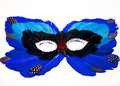 Blue and Black Feather Mask Royalty Free Stock Photo