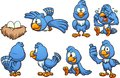 Blue cartoon bird in different poses
