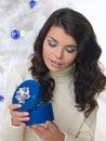 Blue Christmas Chick Stock Image