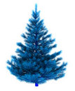 Blue christmas tree Royalty Free Stock Photo