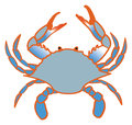Blue crab a color line drawing of a chesapeake bay Stock Photos