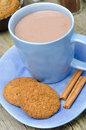 Blue cup of cocoa with cinnamon and oatmeal cookies close up vertical Stock Photography