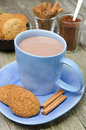 Blue cup of cocoa with cinnamon and oatmeal cookies vertical Royalty Free Stock Photos