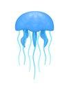 Blue and cyan jellyfish