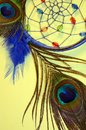 Blue dreamcatcher and peacock feathers abstract Royalty Free Stock Photo