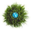 Blue Easter egg on green grass Royalty Free Stock Photography