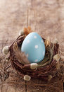 Blue easter egg in nest Royalty Free Stock Photos
