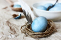 Blue easter egg in a twine nest. Rustic. Royalty Free Stock Photo