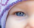 Blue eye of a baby cute in the close up view Royalty Free Stock Photos