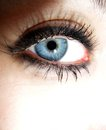 Blue eye close up of a young woman s Royalty Free Stock Image