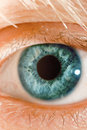 Blue eye macro Royalty Free Stock Photography