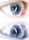 Blue eye in macro with earth map Royalty Free Stock Photo