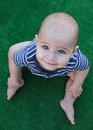 Blue-eyed baby sitting, green fundal. Royalty Free Stock Photo