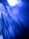 Blue fiber optics strands Stock Image