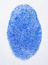 Blue finger print Stock Photos