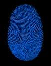 Blue Fingerprint Identity ID Royalty Free Stock Photo