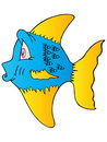 The blue fish yellow fin Stock Photos