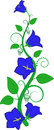 Blue flower isolated vector illustration Royalty Free Stock Photography